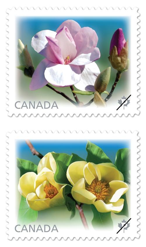 magnolias_stamps